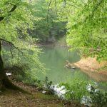 Belgrad Ormanı Nerede Nasıl Gidilir – Mesire Yerleri – Giriş Ücreti – Bahçeköy / Sarıyer