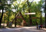 Edirne Kent Ormanı Nerede, Nasıl Gidilir? Genel Bilgiler