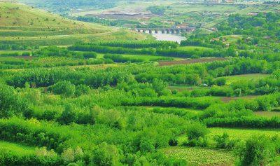 Diyarbakır Hevsel Bahçeleri