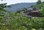 Şirince Köyü Nerede Nasıl Gidilir – Konaklama – Yeme İçme Fiyatları – Gediz / İzmir